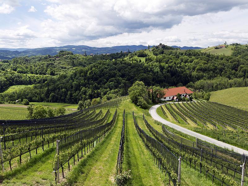 Südsteiermark, Österreich